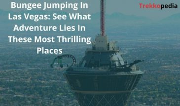 Bungee Jumping In Las Vegas: See What Adventure Lies In These Most Thrilling Places